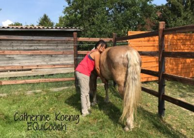 Fatima - témoignage coaching