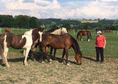 Catherine avec ses chevaux