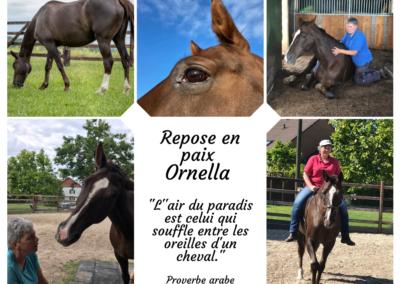 au revoir Ornella